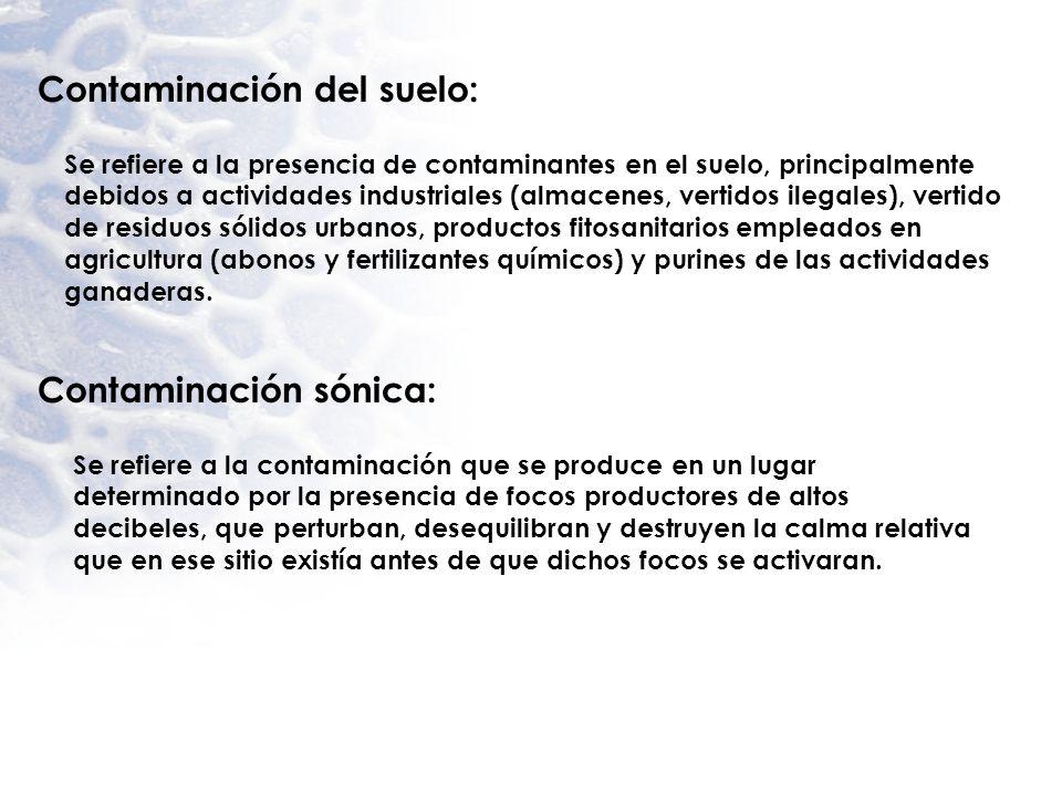 Contaminación del suelo: Se refiere a la presencia de contaminantes en el suelo, principalmente debidos a actividades industriales (almacenes, vertido