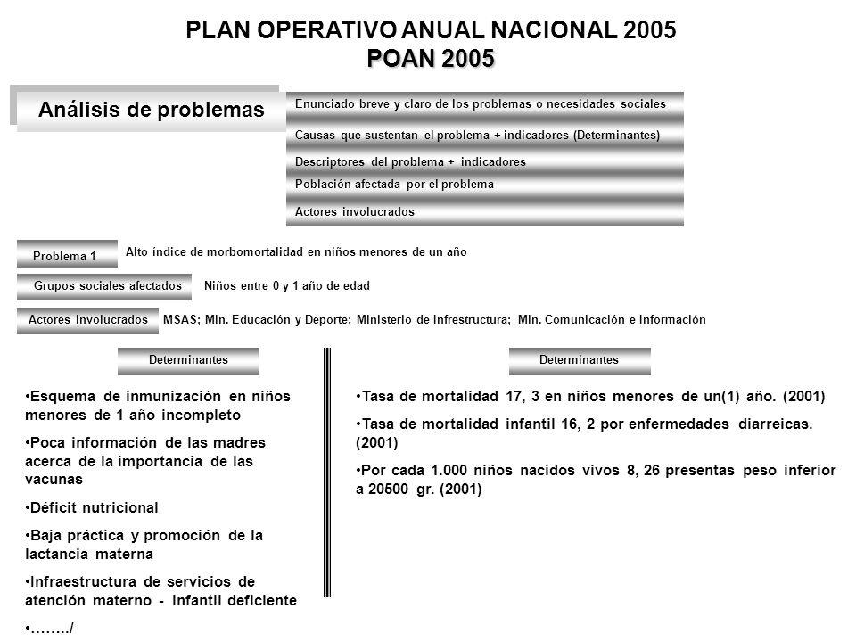 POAN 2005 PLAN OPERATIVO ANUAL NACIONAL 2005 POAN 2005 Análisis de problemas Enunciado breve y claro de los problemas o necesidades sociales Causas qu