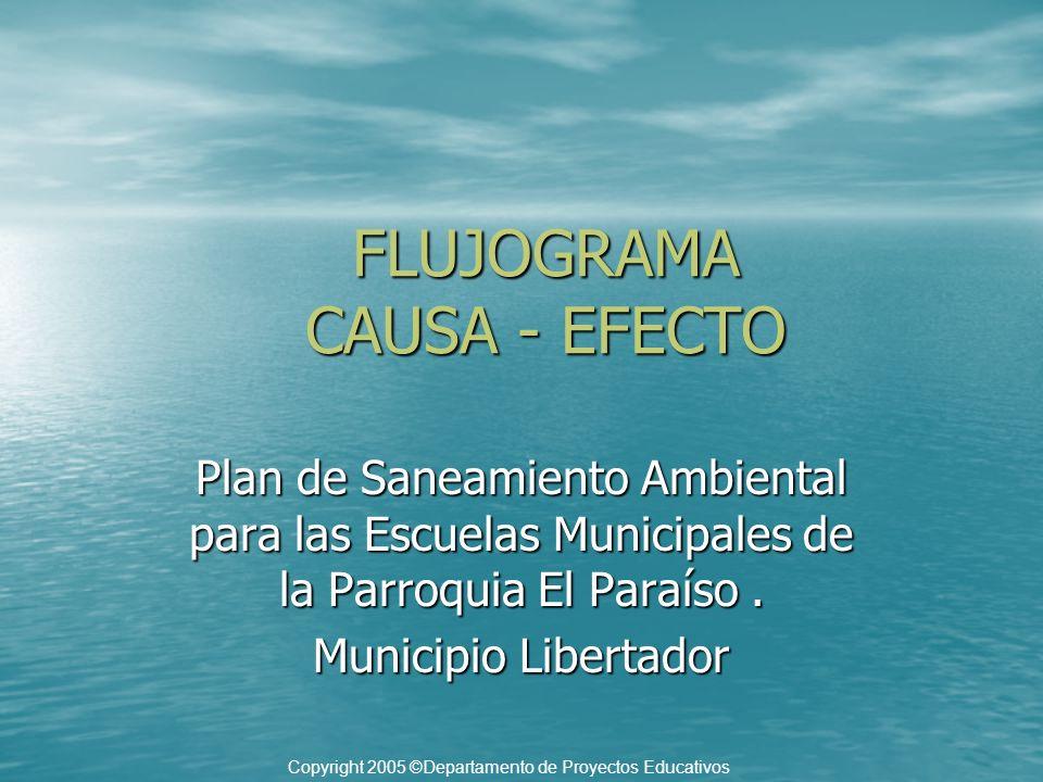 FLUJOGRAMA CAUSA - EFECTO Plan de Saneamiento Ambiental para las Escuelas Municipales de la Parroquia El Paraíso. Municipio Libertador Copyright 2005