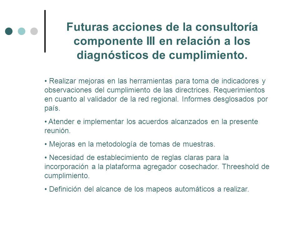 Futuras acciones de la consultoría componente III en relación a los diagnósticos de cumplimiento.