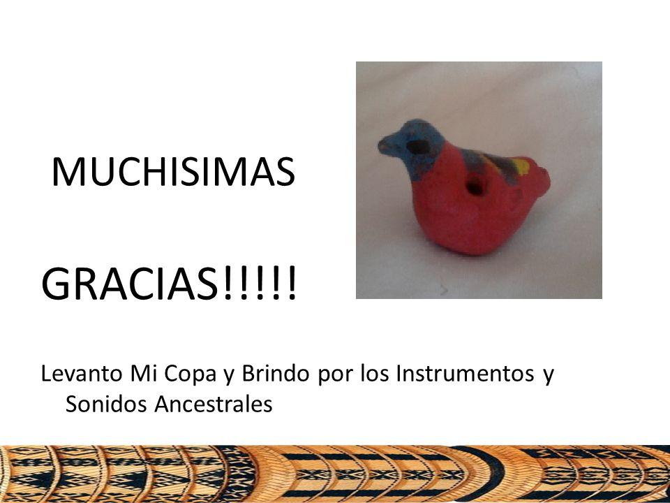 MUCHISIMAS GRACIAS!!!!! Levanto Mi Copa y Brindo por los Instrumentos y Sonidos Ancestrales