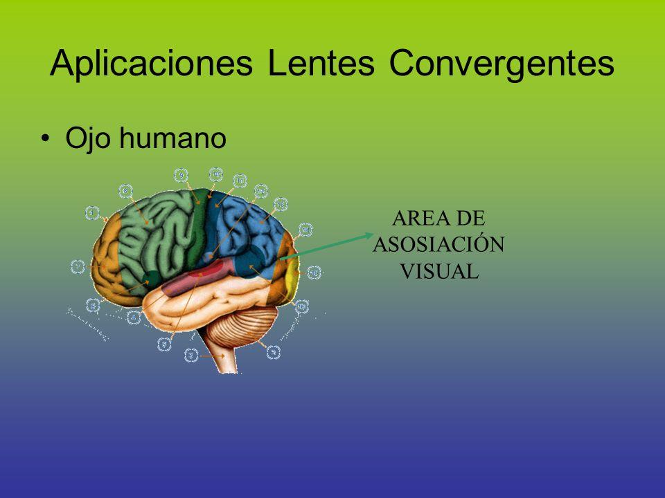 Aplicaciones Lentes Convergentes Ojo humano AREA DE ASOSIACIÓN VISUAL