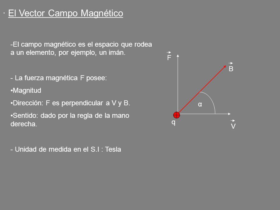 q F B V α · El Vector Campo Magnético -El campo magnético es el espacio que rodea a un elemento, por ejemplo, un imán. - La fuerza magnética F posee: