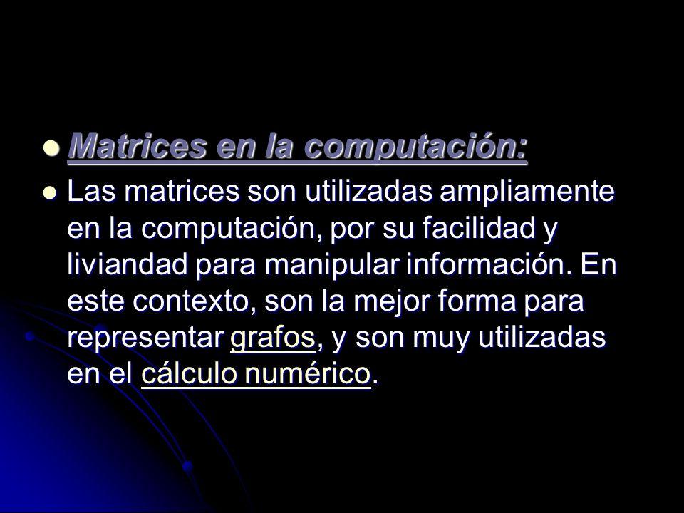 Matrices en la computación: Matrices en la computación: Las matrices son utilizadas ampliamente en la computación, por su facilidad y liviandad para m