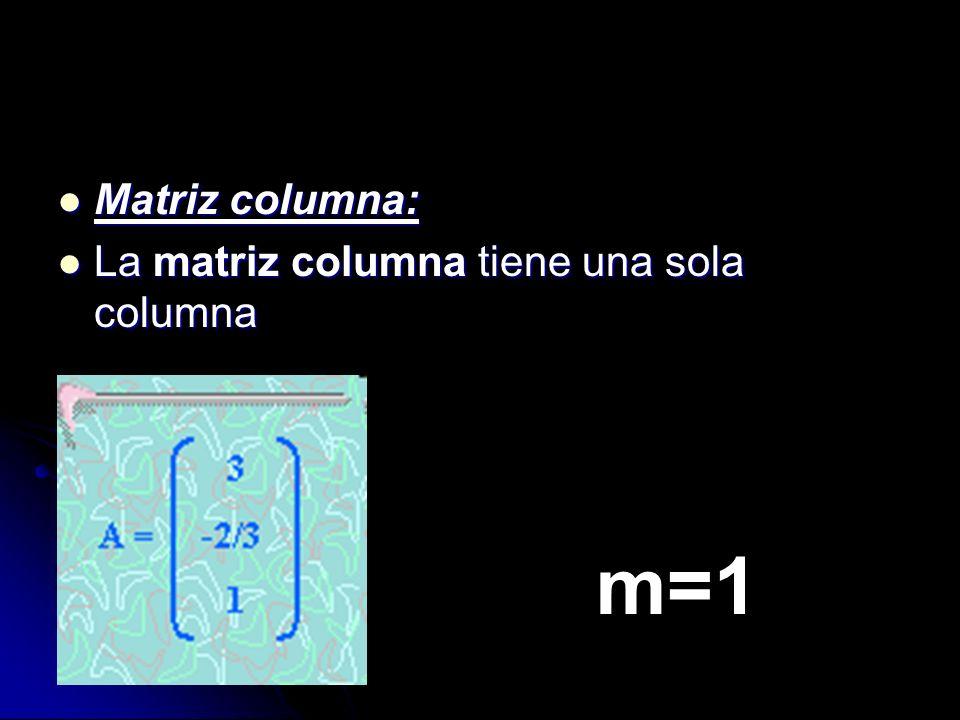 Matriz columna: Matriz columna: La matriz columna tiene una sola columna La matriz columna tiene una sola columna m=1