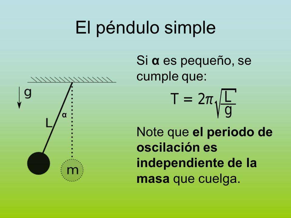 El péndulo simple Si α es pequeño, se cumple que: Note que el periodo de oscilación es independiente de la masa que cuelga. α