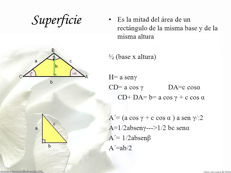 Es la mitad del área de un rectángulo de la misma base y de la misma altura ½ (base x altura) H= a senγ CD= a cos γ DA=c cosα CD+ DA= b= a cos γ + c c