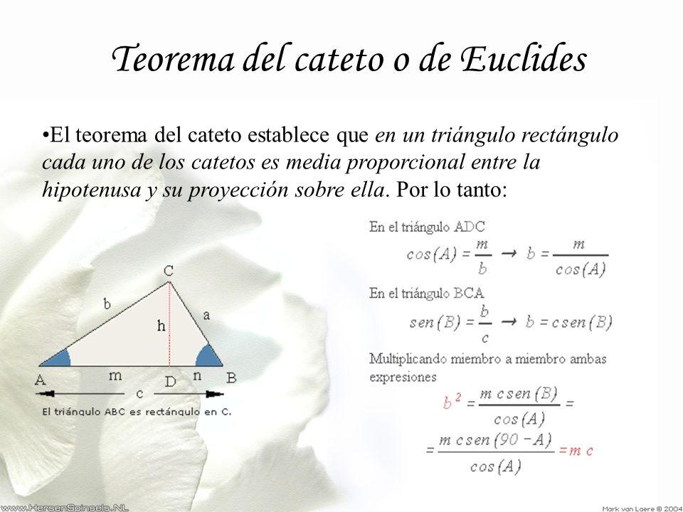 Teorema del cateto o de Euclides El teorema del cateto establece que en un triángulo rectángulo cada uno de los catetos es media proporcional entre la