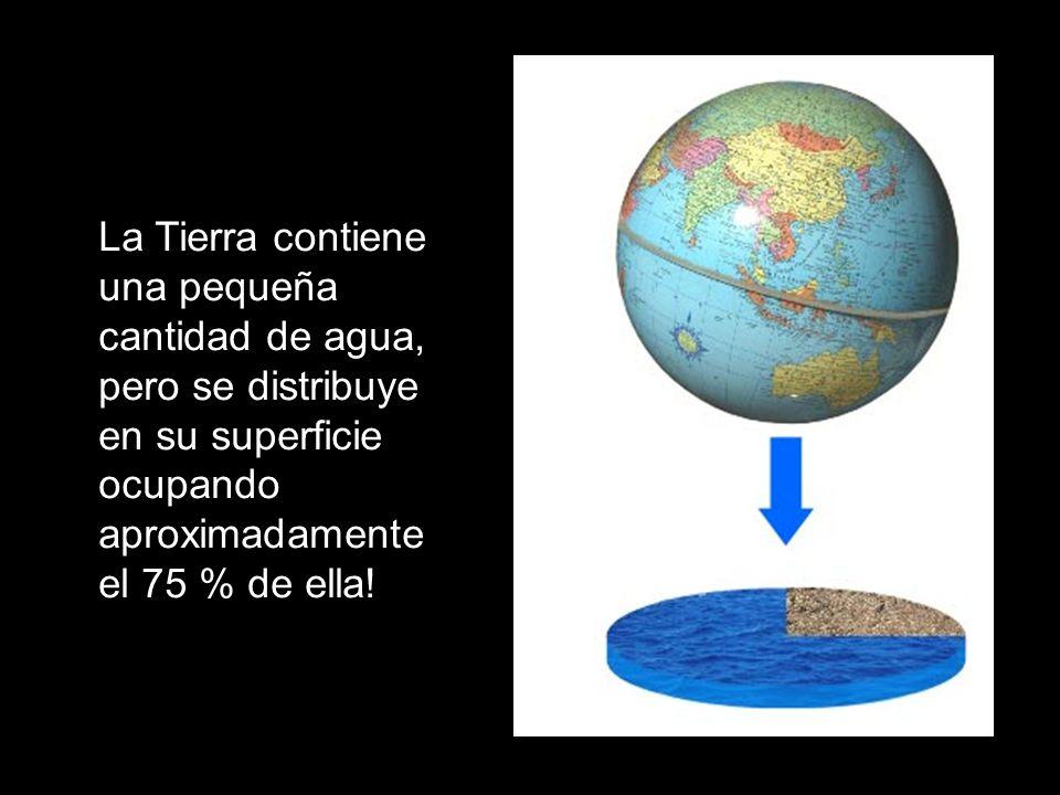 La Tierra contiene una pequeña cantidad de agua, pero se distribuye en su superficie ocupando aproximadamente el 75 % de ella! Estructura interna