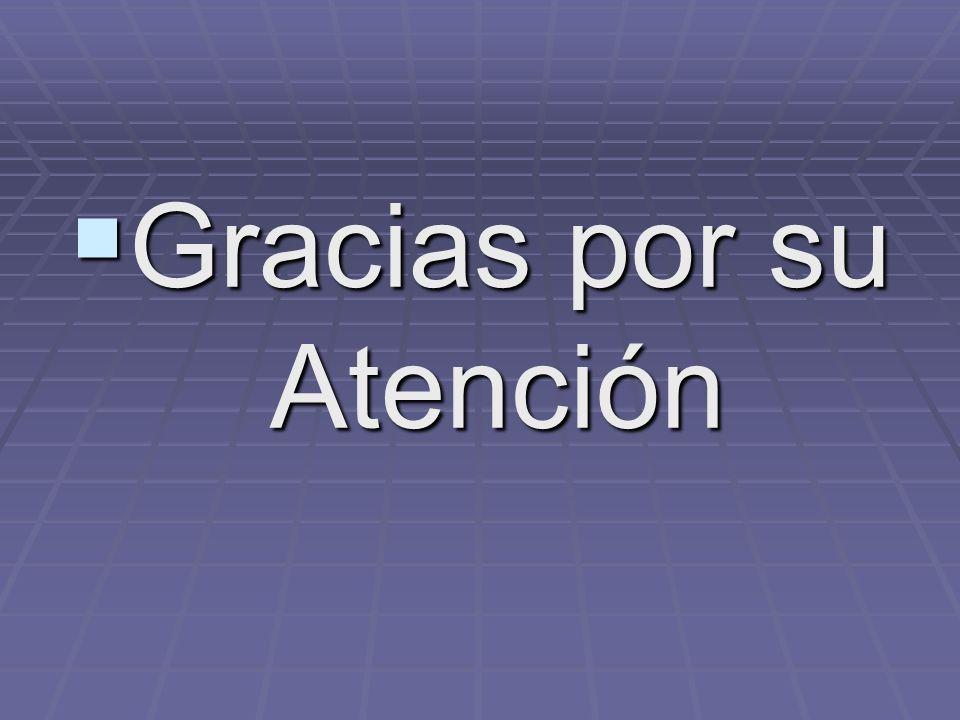 Gracias por su Atención Gracias por su Atención