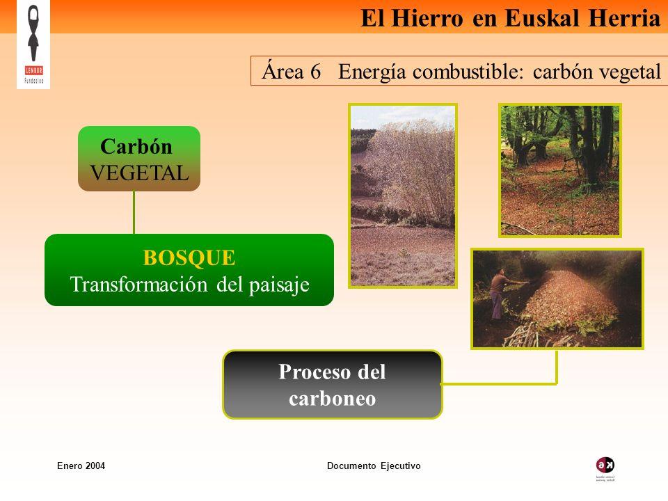 El Hierro en Euskal Herria Enero 2004 Documento Ejecutivo Área 6 Energía combustible: carbón vegetal Carbón VEGETAL BOSQUE Transformación del paisaje