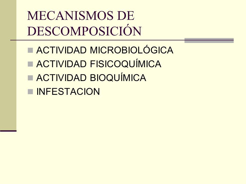 ACTIVIDAD MICROBIOLÓGICA