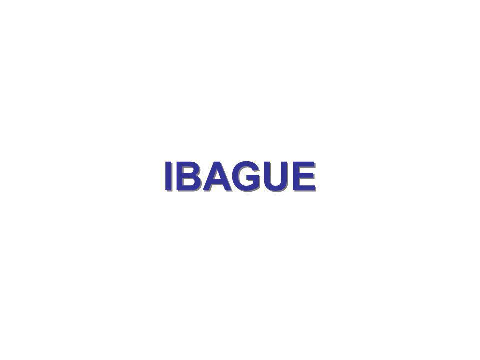 IBAGUE