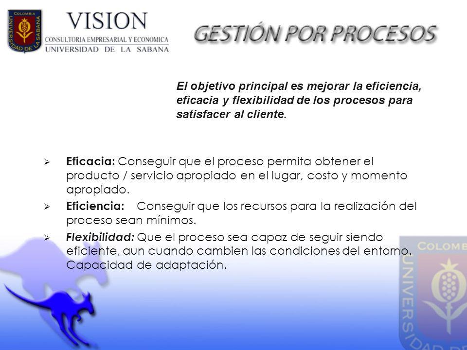 Eficacia: Conseguir que el proceso permita obtener el producto / servicio apropiado en el lugar, costo y momento apropiado. Eficiencia: Conseguir que