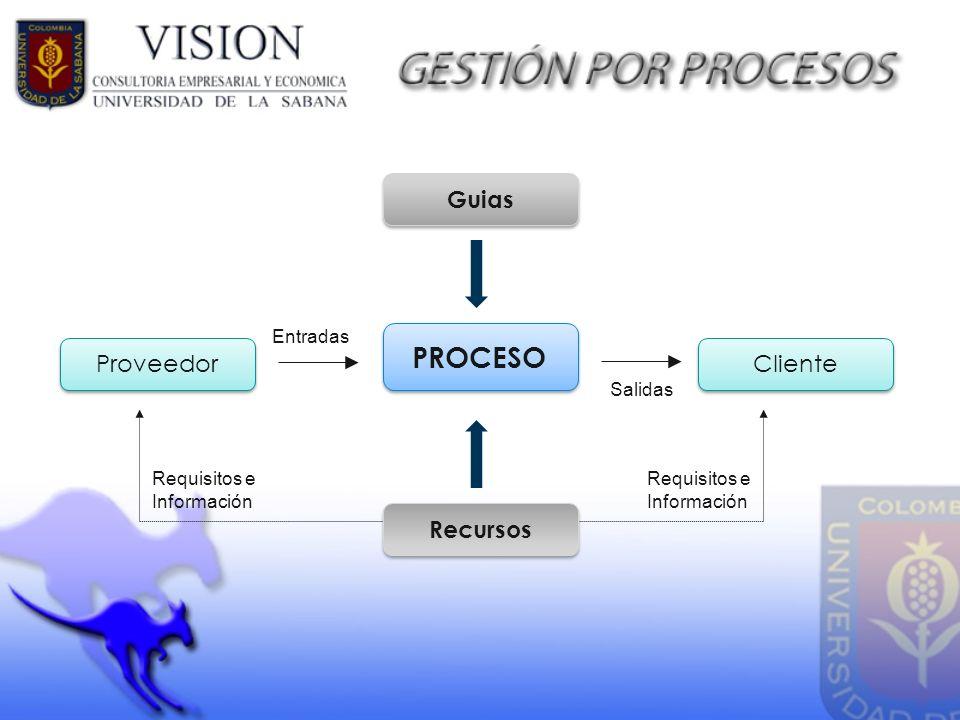 Entradas Salidas Requisitos e Información Guias Recursos PROCESO Proveedor Cliente