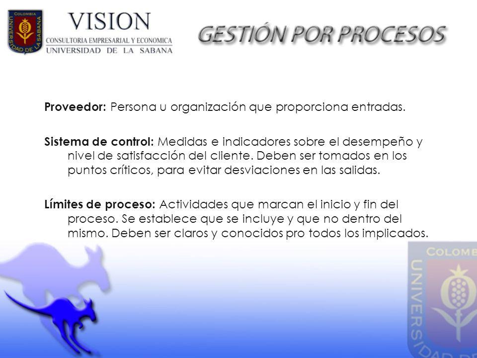 Proveedor: Persona u organización que proporciona entradas. Sistema de control: Medidas e indicadores sobre el desempeño y nivel de satisfacción del c