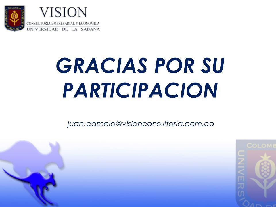 GRACIAS POR SU PARTICIPACION juan.camelo@visionconsultoria.com.co