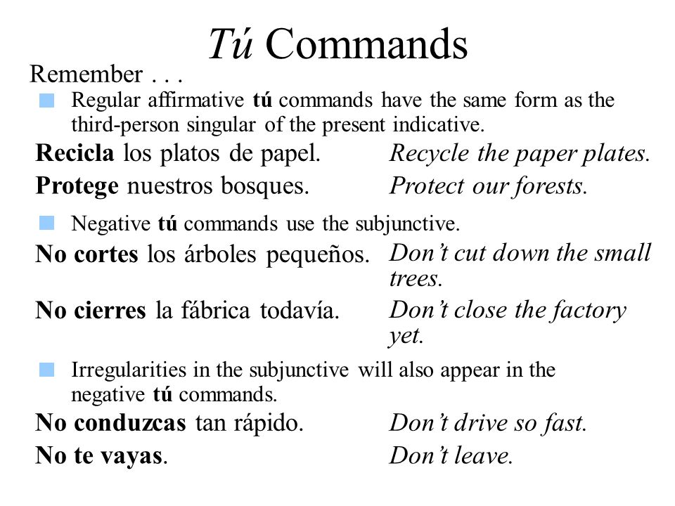 Tú Commands Remember... Regular affirmative tú commands have the same form as the third-person singular of the present indicative. Recicla los platos