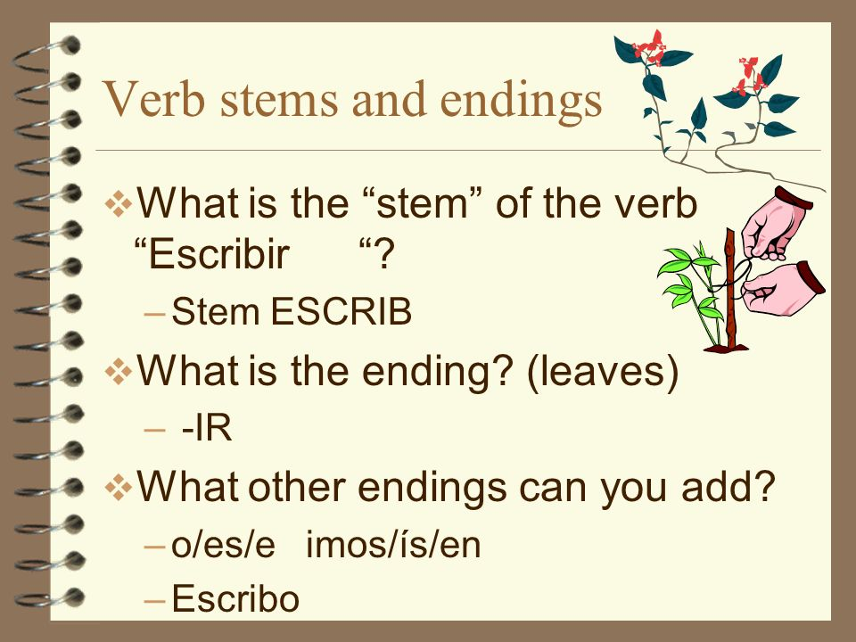 E -> I stem-changing verbs The final stem-change pattern is e->I Well start with PEDIR, which changes to PIDO in the first person… Try it in a t-chart!