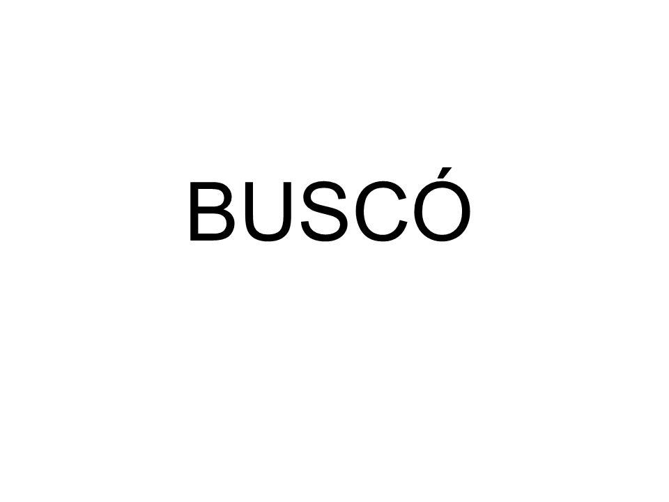 BUSCÓ