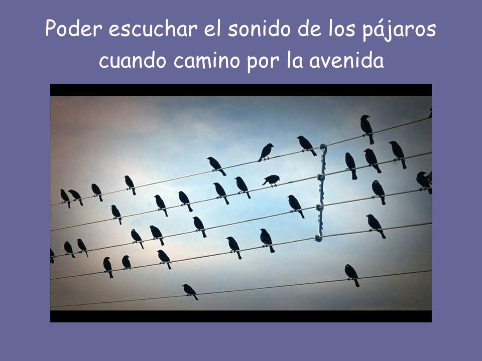 Poder escuchar el sonido de los pájaros cuando camino por la avenida