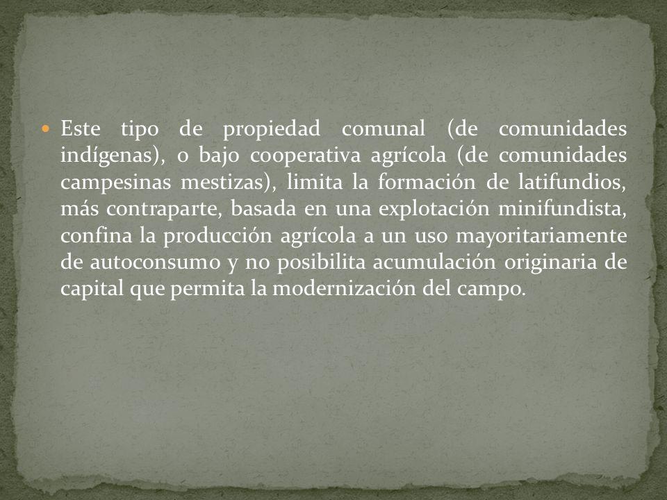 El producto de la revolución llevada por los indígenas de Morelos es el surgimiento del Ejido como fórmula de organización social campesina, como acto