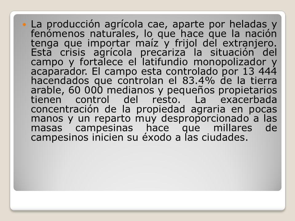 La producción agrícola cae, aparte por heladas y fenómenos naturales, lo que hace que la nación tenga que importar maíz y frijol del extranjero. Esta