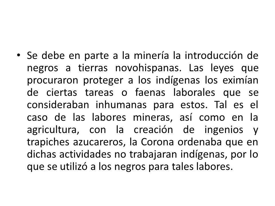 Se debe en parte a la minería la introducción de negros a tierras novohispanas. Las leyes que procuraron proteger a los indígenas los eximían de ciert