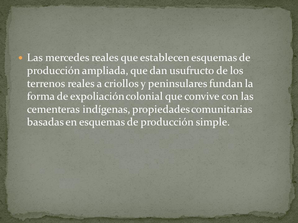 Las mercedes reales que establecen esquemas de producción ampliada, que dan usufructo de los terrenos reales a criollos y peninsulares fundan la forma