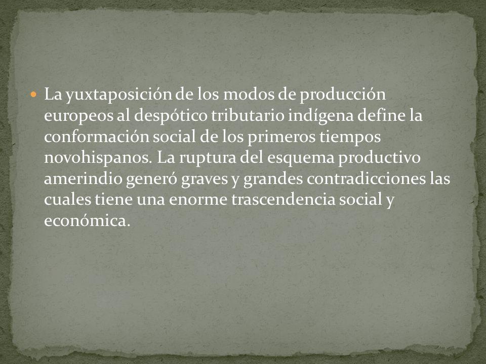 La yuxtaposición de los modos de producción europeos al despótico tributario indígena define la conformación social de los primeros tiempos novohispan