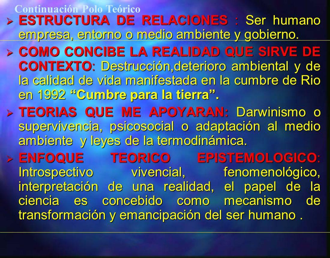 ESTRUCTURA DE RELACIONES : Ser humano empresa, entorno o medio ambiente y gobierno. ESTRUCTURA DE RELACIONES : Ser humano empresa, entorno o medio amb