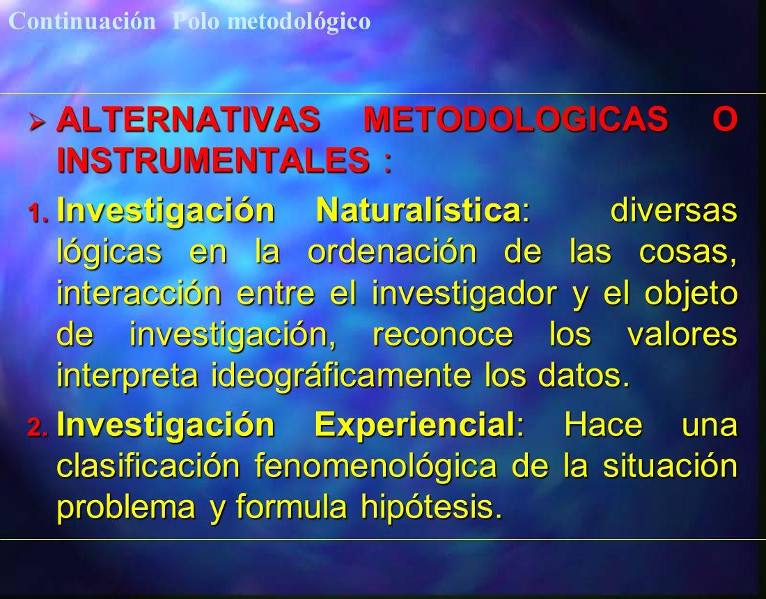 ALTERNATIVAS METODOLOGICAS O INSTRUMENTALES : ALTERNATIVAS METODOLOGICAS O INSTRUMENTALES : 1. Investigación Naturalística: diversas lógicas en la ord