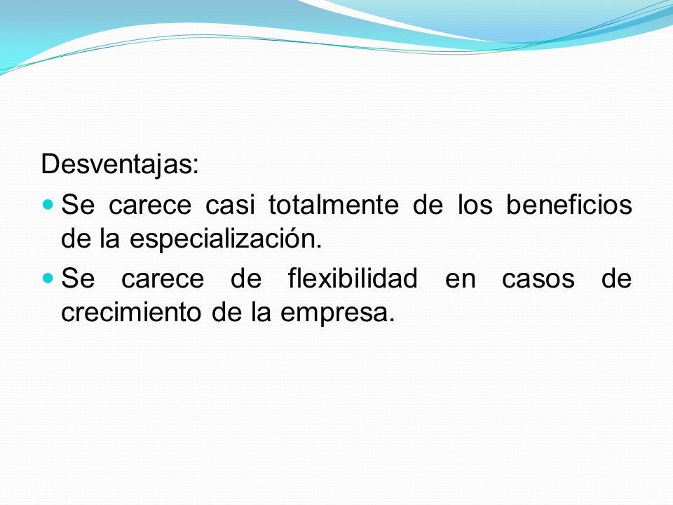 Organización funcional o de Taylor: Es la especialización en áreas determinadas por un miembro.
