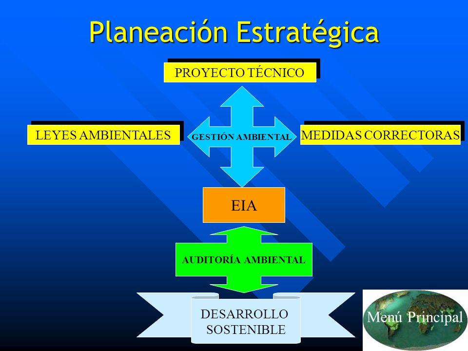Lic. Fabián E. Sánchez Cruz32 Planeación Estratégica PROYECTO TÉCNICO LEYES AMBIENTALES MEDIDAS CORRECTORAS GESTIÓN AMBIENTAL EIA AUDITORÍA AMBIENTAL