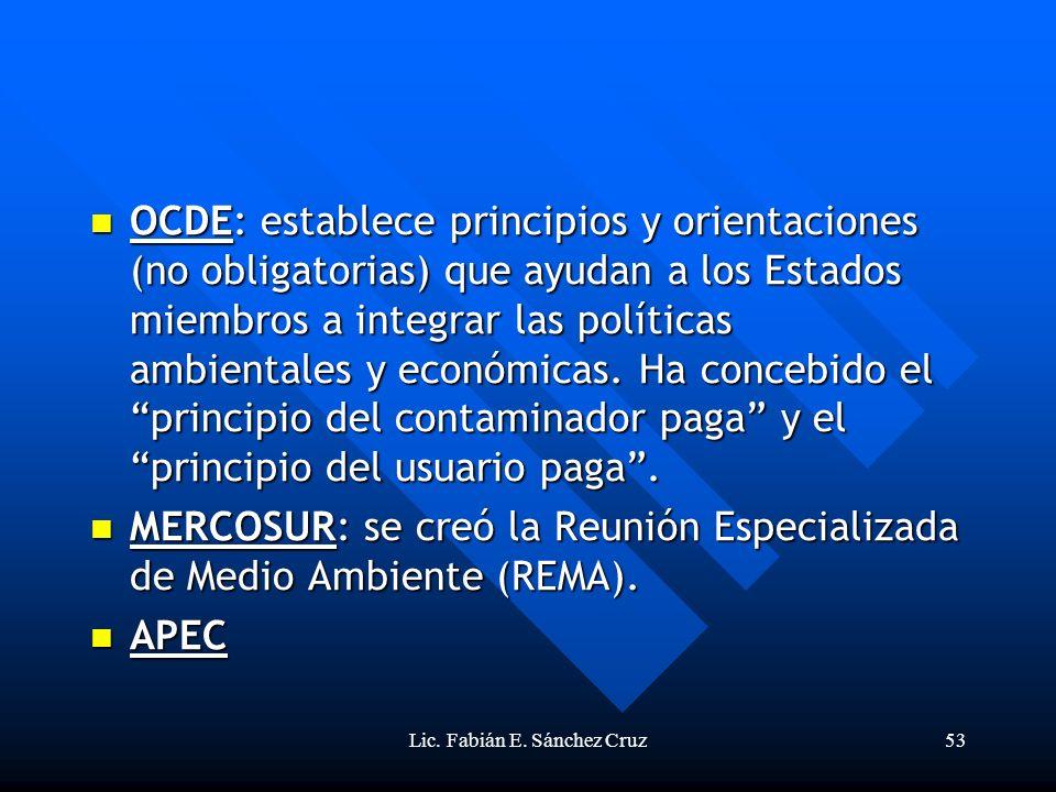 Lic. Fabián E. Sánchez Cruz53 OCDE: establece principios y orientaciones (no obligatorias) que ayudan a los Estados miembros a integrar las políticas