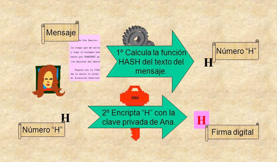 H H H Firma digital Número H Mensaje 1º Calcula la función HASH del texto del mensaje. 2º Encripta H con la clave privada de Ana. Número H