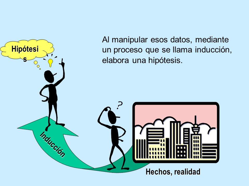 Hipótesi s Hechos, realidad I n d u c c i ó n Al manipular esos datos, mediante un proceso que se llama inducción, elabora una hipótesis.