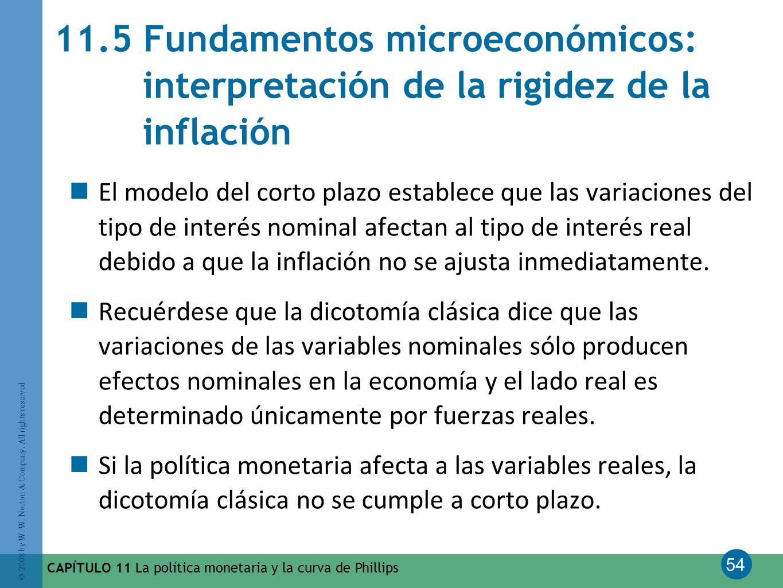 54 © 2008 by W. W. Norton & Company. All rights reserved CAPÍTULO 11 La política monetaria y la curva de Phillips 11.5 Fundamentos microeconómicos: in