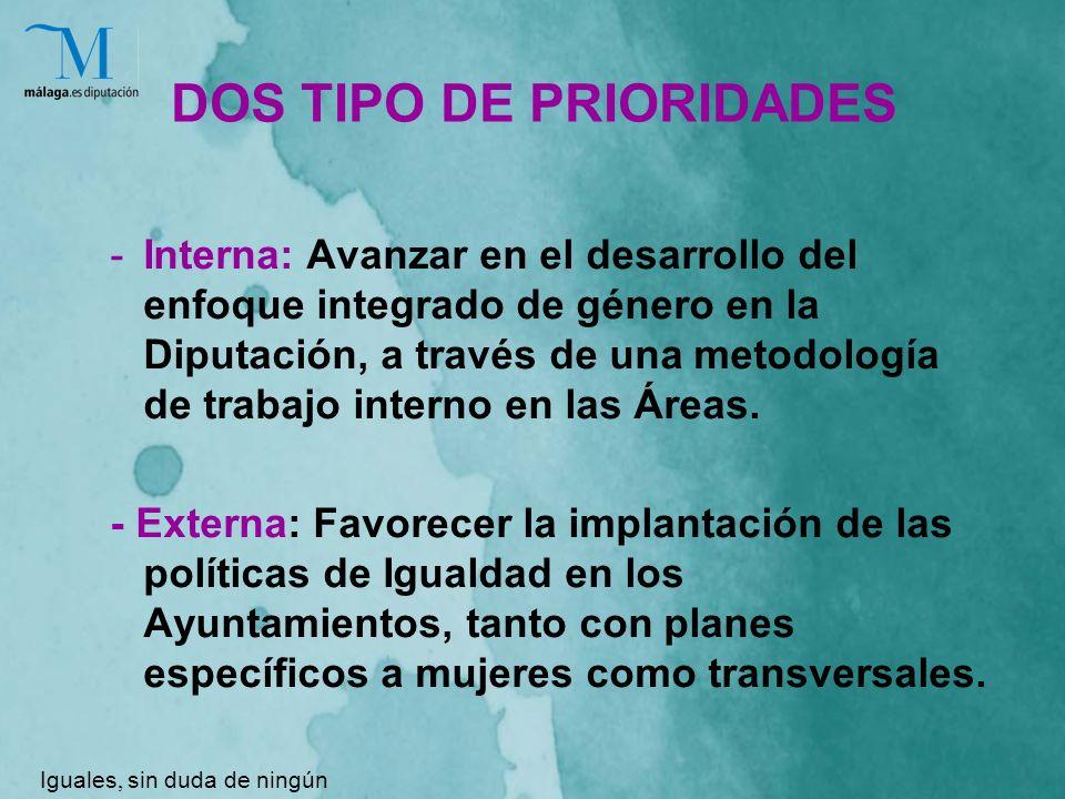 DOS TIPO DE PRIORIDADES -Interna: Avanzar en el desarrollo del enfoque integrado de género en la Diputación, a través de una metodología de trabajo interno en las Áreas.