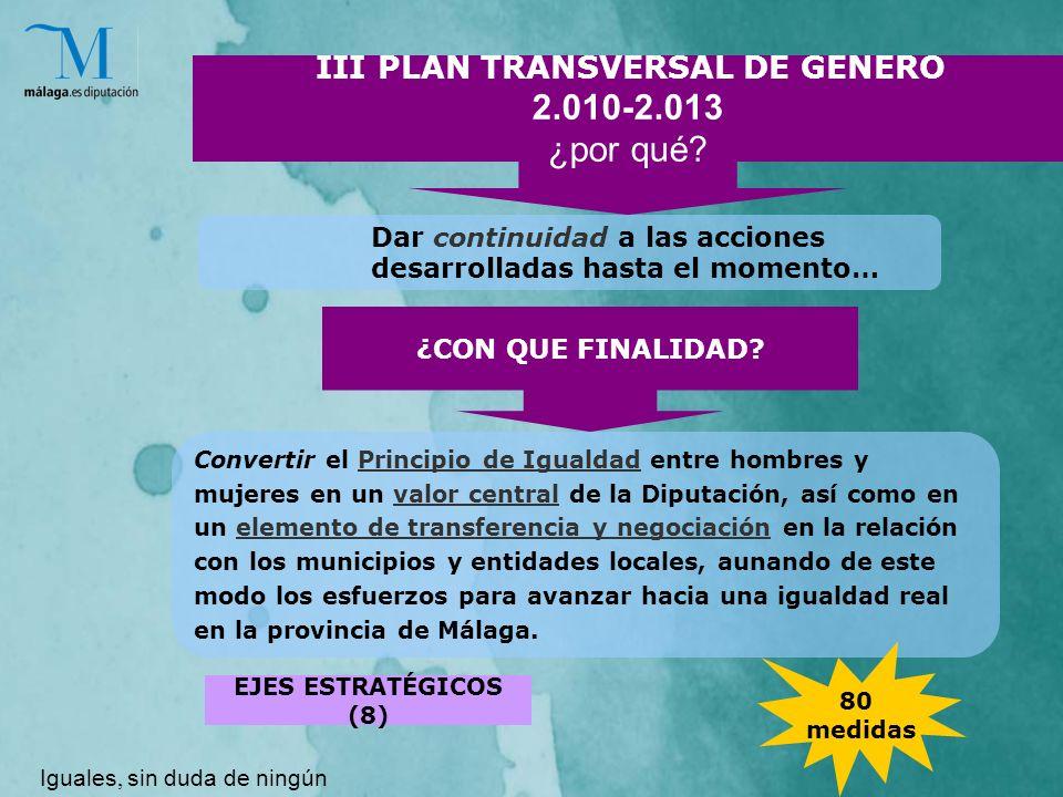 III PLAN TRANSVERSAL DE GENERO 2.010-2.013 ¿por qué.