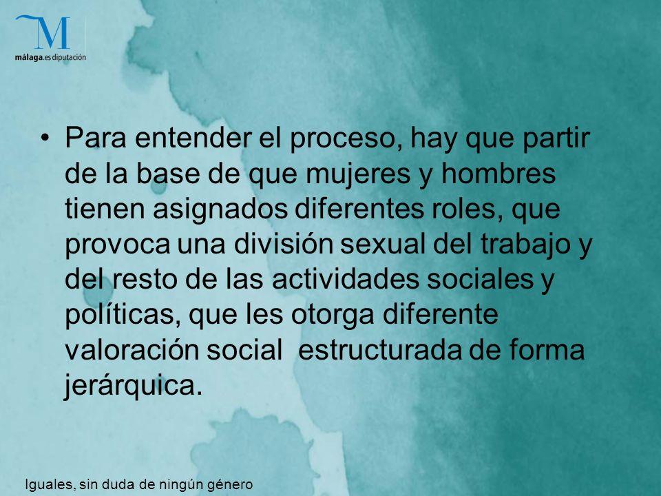 Para entender el proceso, hay que partir de la base de que mujeres y hombres tienen asignados diferentes roles, que provoca una división sexual del trabajo y del resto de las actividades sociales y políticas, que les otorga diferente valoración social estructurada de forma jerárquica.