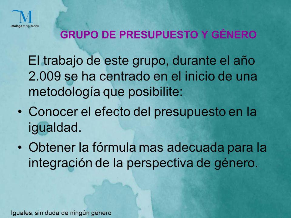 GRUPO DE PRESUPUESTO Y GÉNERO El trabajo de este grupo, durante el año 2.009 se ha centrado en el inicio de una metodología que posibilite: Conocer el efecto del presupuesto en la igualdad.
