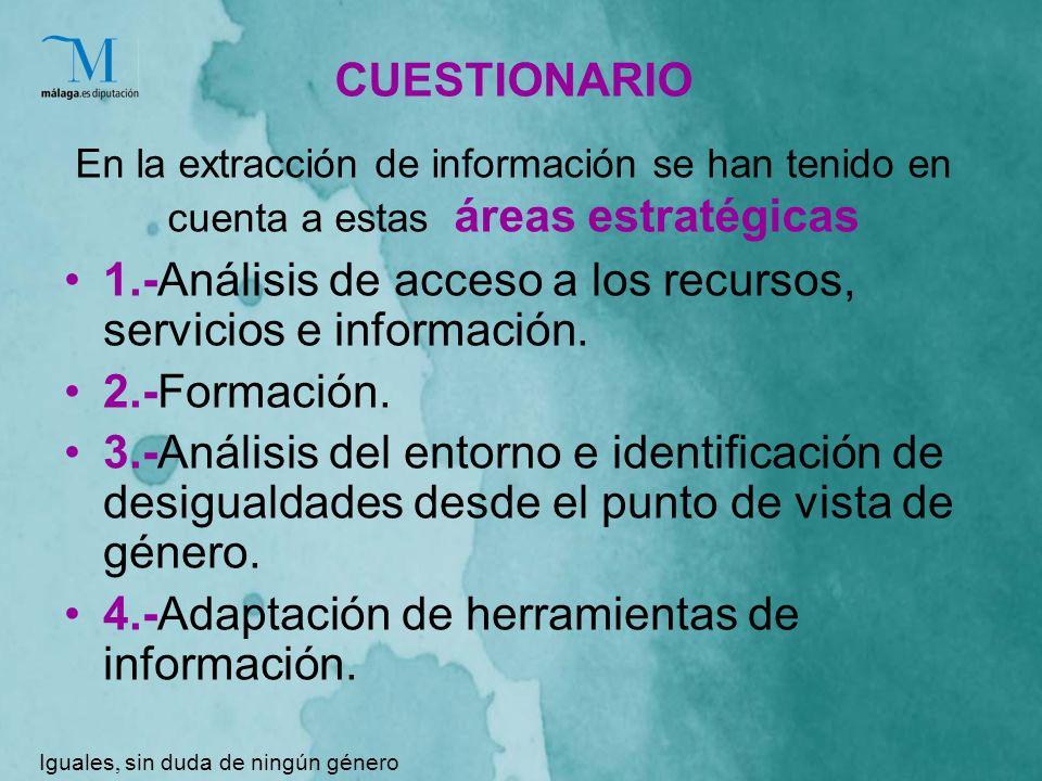 CUESTIONARIO En la extracción de información se han tenido en cuenta a estas áreas estratégicas 1.-Análisis de acceso a los recursos, servicios e información.