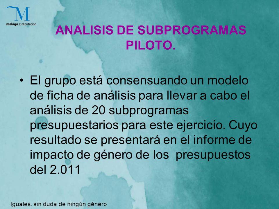 ANALISIS DE SUBPROGRAMAS PILOTO.