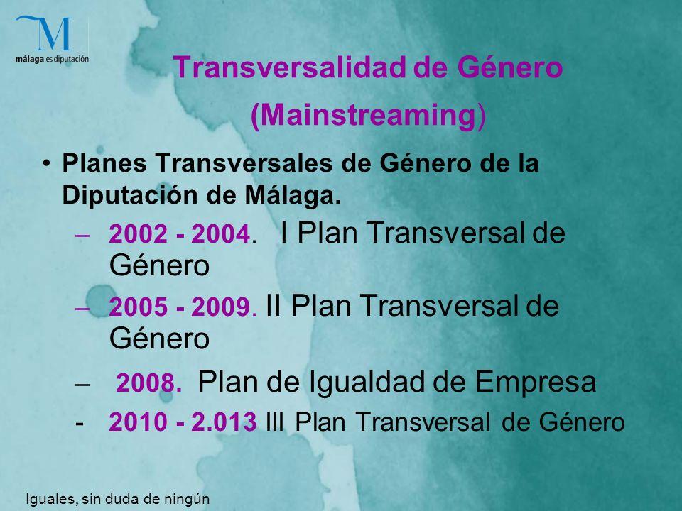 Transversalidad de Género (Mainstreaming) Planes Transversales de Género de la Diputación de Málaga.