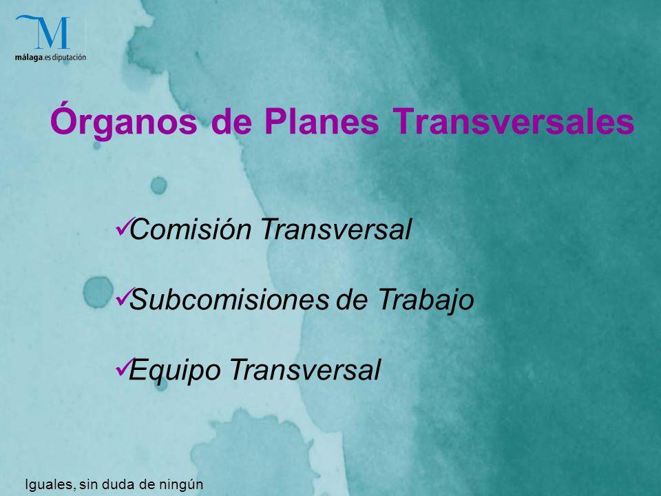 Órganos de Planes Transversales Iguales, sin duda de ningún género Comisión Transversal Subcomisiones de Trabajo Equipo Transversal