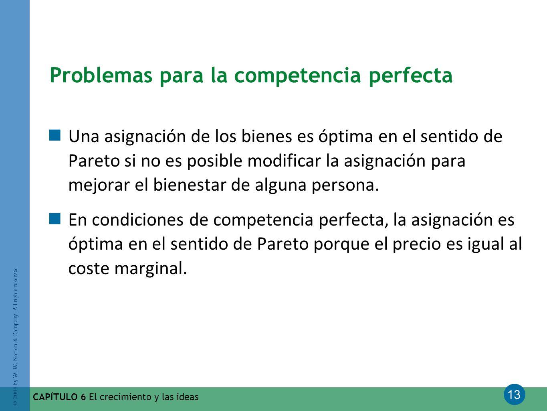 13 © 2008 by W. W. Norton & Company. All rights reserved CAPÍTULO 6 El crecimiento y las ideas Problemas para la competencia perfecta Una asignación d