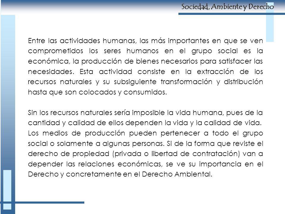 Entre las actividades humanas, las más importantes en que se ven comprometidos los seres humanos en el grupo social es la económica, la producción de