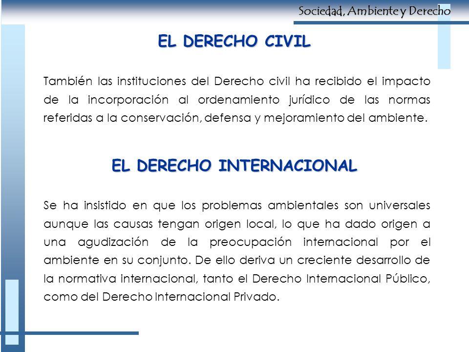 EL DERECHO CIVIL También las instituciones del Derecho civil ha recibido el impacto de la incorporación al ordenamiento jurídico de las normas referid