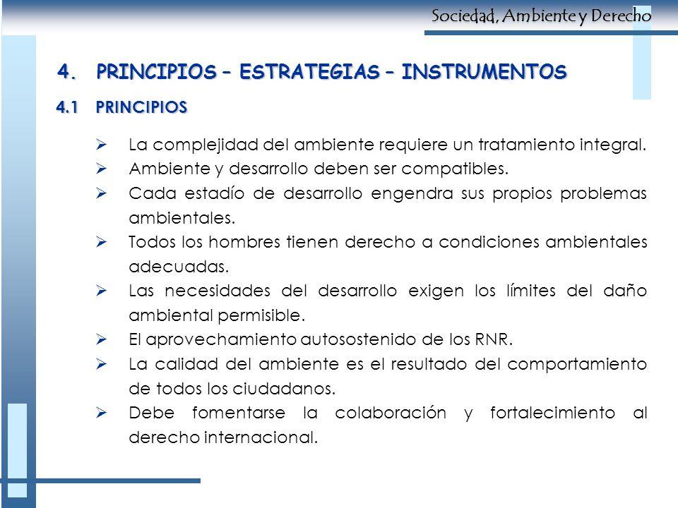 4.PRINCIPIOS – ESTRATEGIAS – INSTRUMENTOS 4.1PRINCIPIOS La complejidad del ambiente requiere un tratamiento integral. Ambiente y desarrollo deben ser